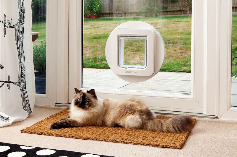 Microchip-Scanning Pet Doors