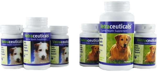 Designer Vitamins for Pets
