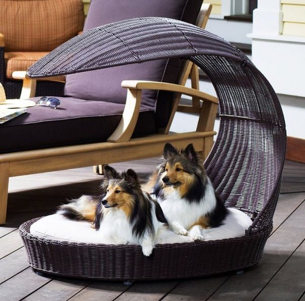 Canine Lounging Canopies