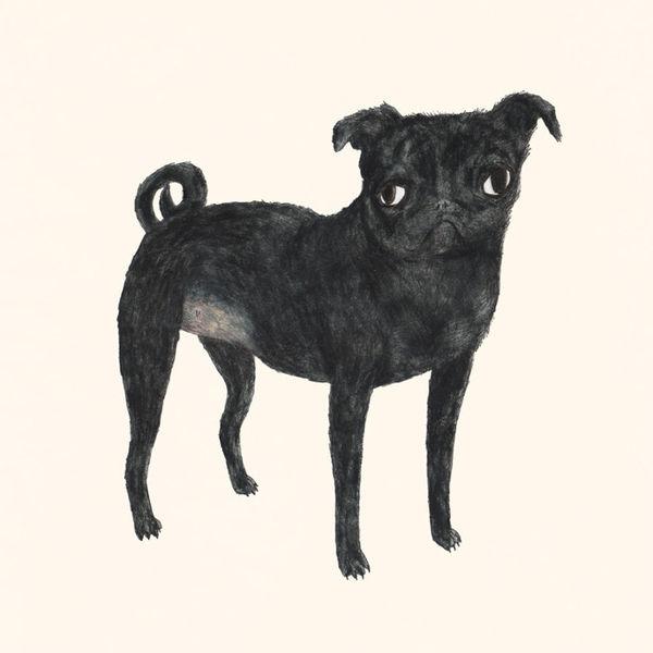 Characteristic Pet Portraits