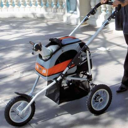 Sporty Pet Strollers