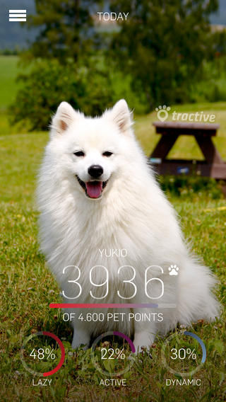 Pet Activity Apps