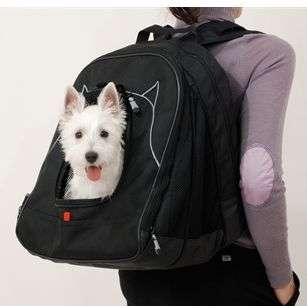 Dog Carrying Backpacks