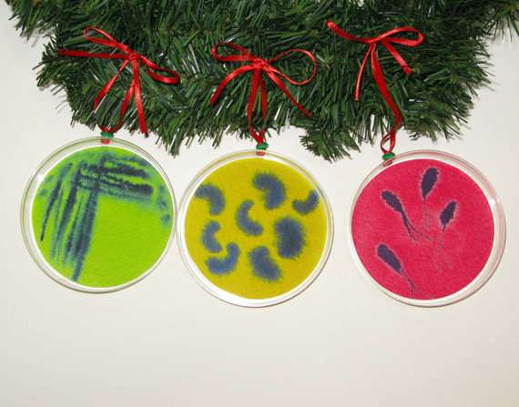 petri dish Christmas ornaments