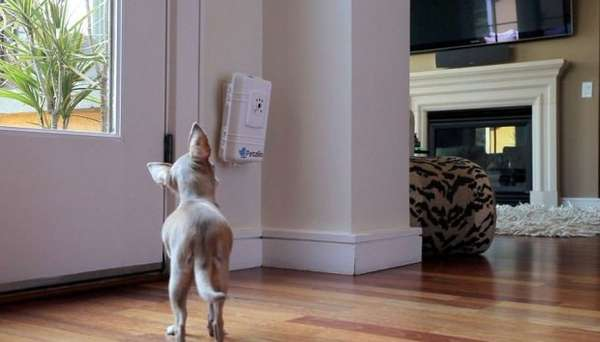 Wireless Pet Communication Devices