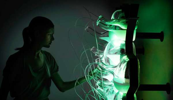 Bacteria-Powered Lighting