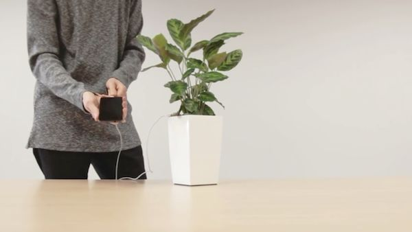 Eco-Friendly Phone Chargers
