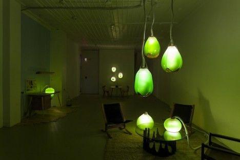 Photosynthetic Furnishings