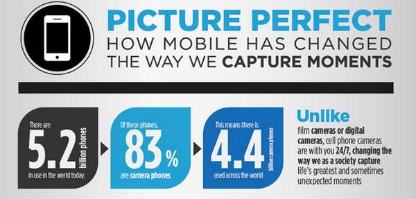 picture perfect infographic