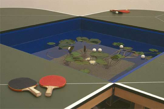 Ping Pond Table