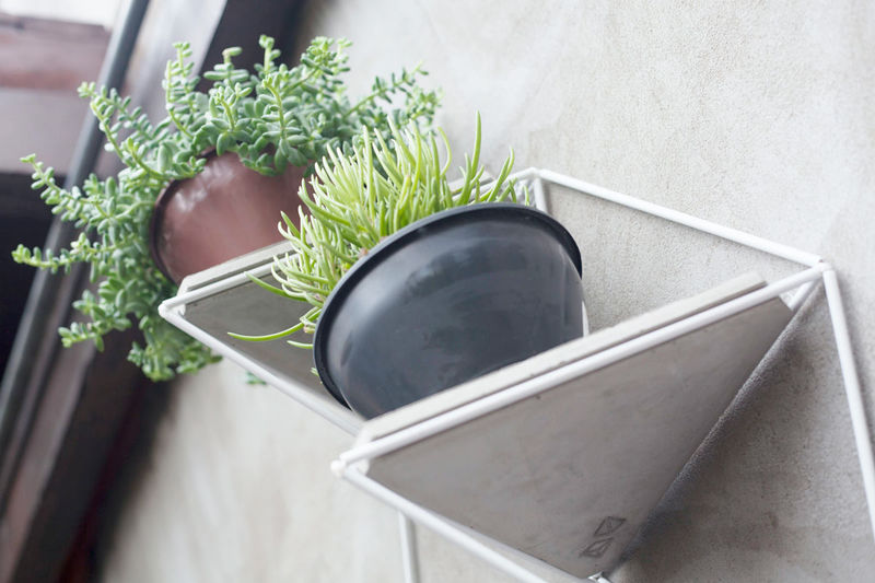 Geometric Greenery Shelves