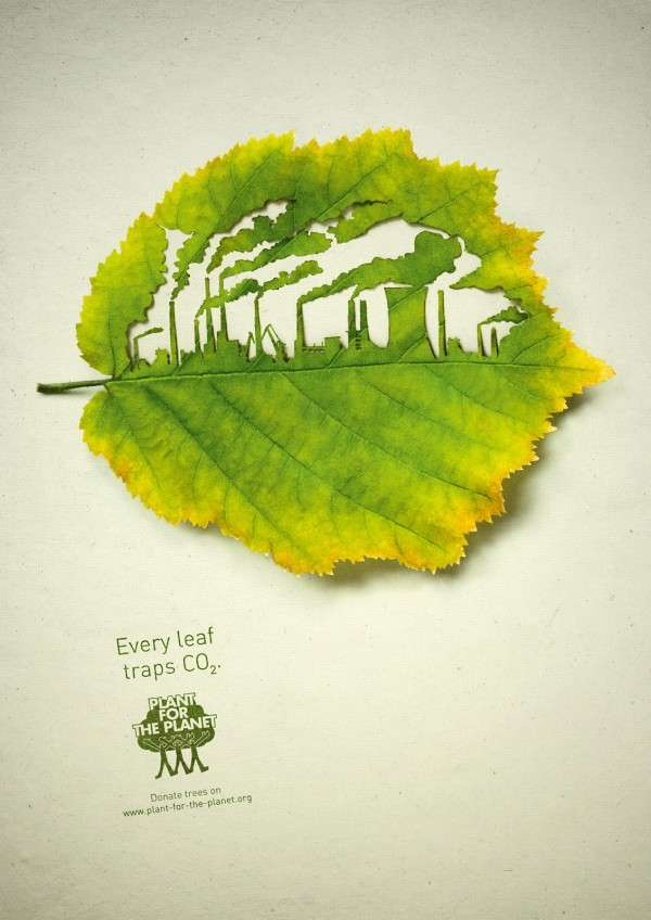 Plant for the Planet Ads