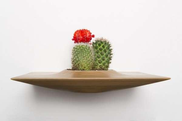 Cactus Shelf Planters