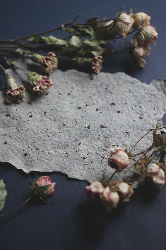 Homemade Plantable Paper