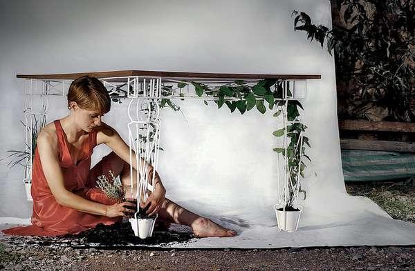 Greenhouse Countertops