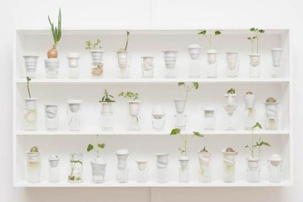 Upcycled Glassware Greenhouses