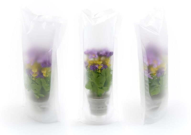 Puzzle Planter Packaging