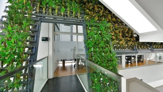 Modular Vertical Planting Systems