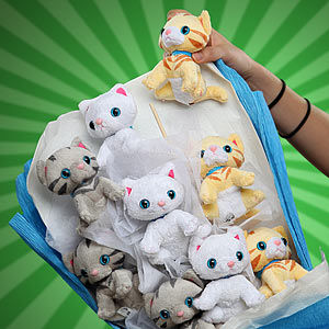Adorable Plush Feline Bouquets