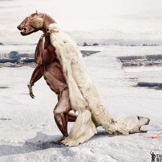 Skinned Polar Bears for Global Warming