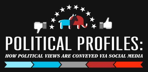 political profiles infographic