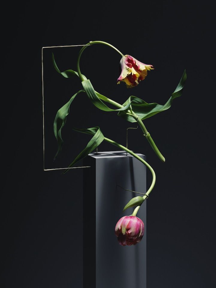Shapely Floral Sculptures