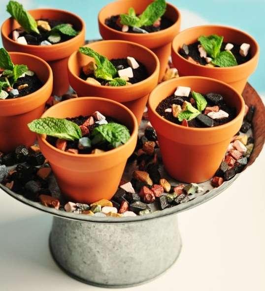 Rich Cocoa Planter Desserts
