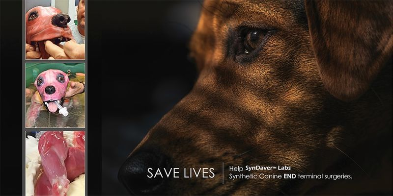 Life-Saving Synthetic Canines