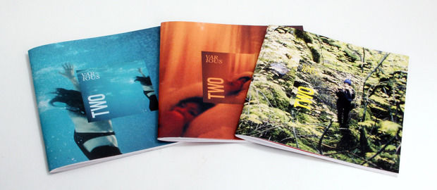 Interpretive Print Projects