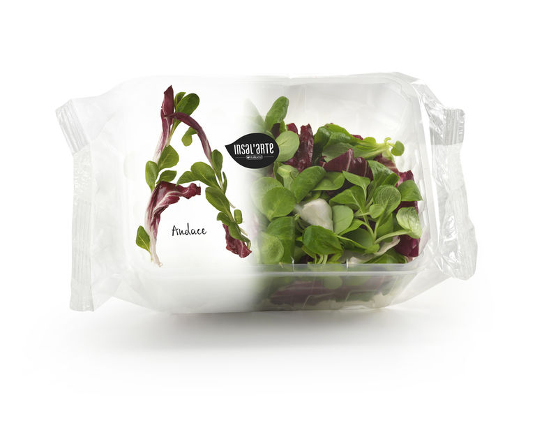 Typographic Salad Packaging