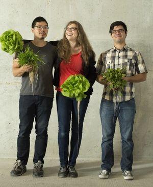 Sustainable Urban Eateries