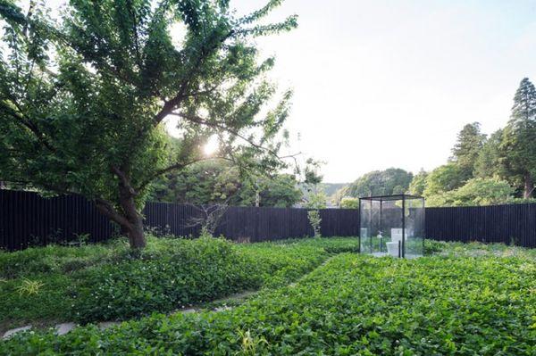 Transparent Outdoor Garden Toilets