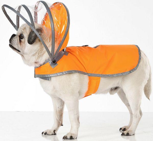 Cute Canine Raincoats