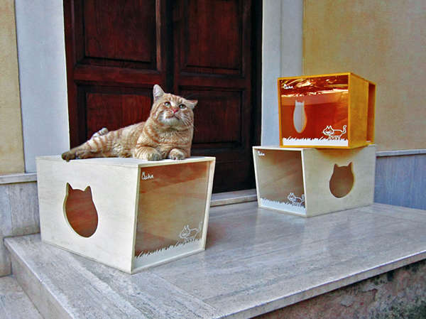 Modular Kitty Boxes