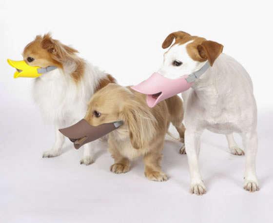 Beaked Canine Muzzles