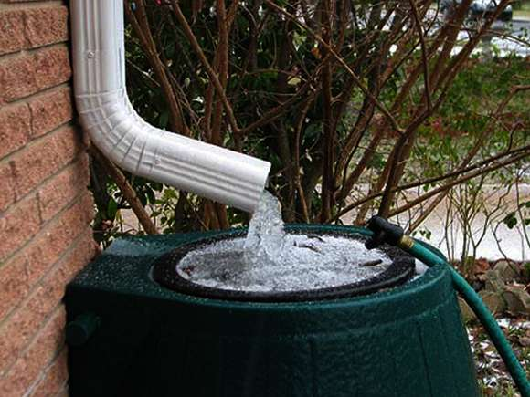Eco Rainwater Mandates