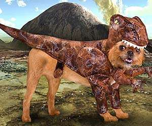 Prehistoric Puppy Outfits