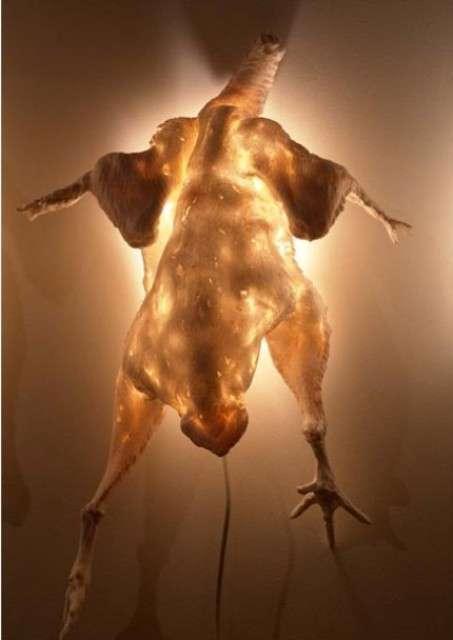 Raw Chicken Lights