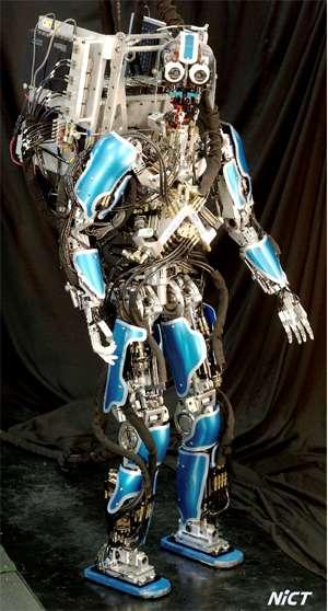 Real-Life C-3PO