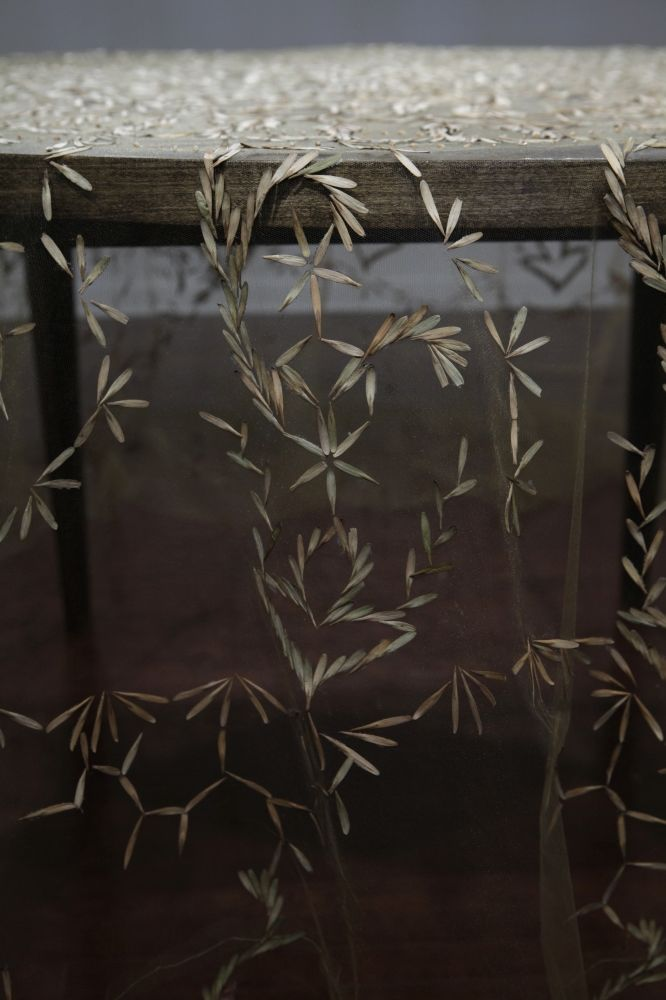 Sown Seed Tablecloths