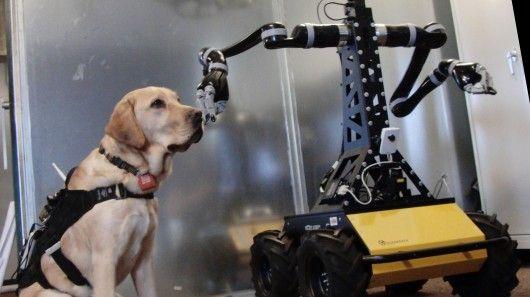 Smart Rescue Dog Harnesses