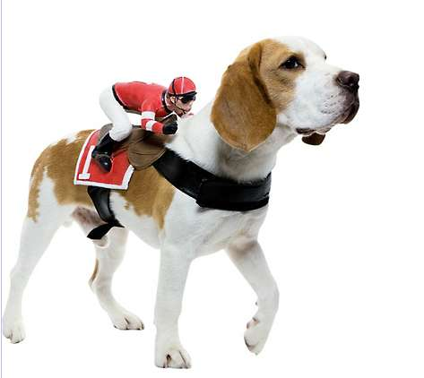 Ride On Dog Costumes