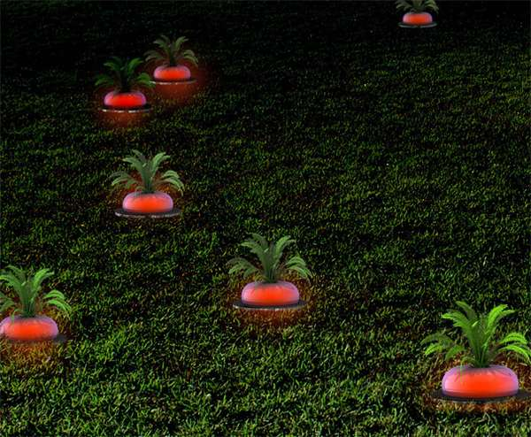 Glowing Garden Veggies