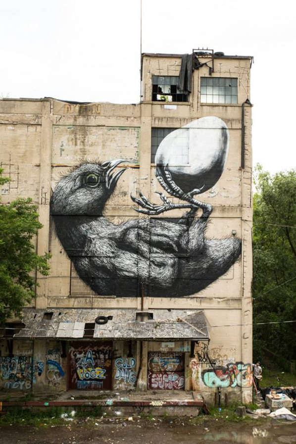 Avian Evolution Graffiti