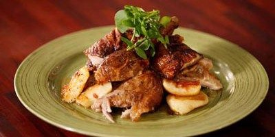 Casual Roast Duck Dishes