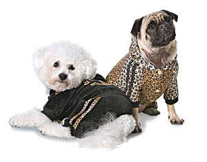 Canine Haute Couture – Roberto Cavalli Pets Is The Latest in Designer Doggy Style