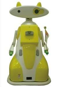 Robotic Babysitters