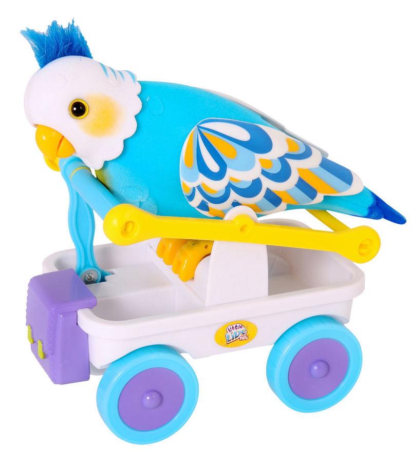 Robotic Bird Pets