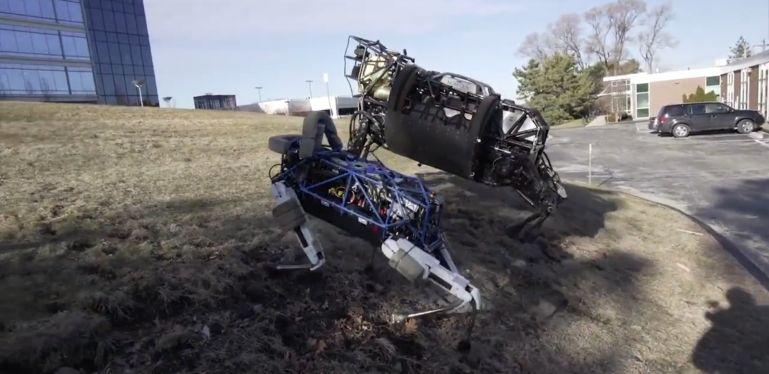 Kickable Robotic Dogs