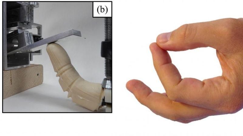 Realistic Robotic Fingers